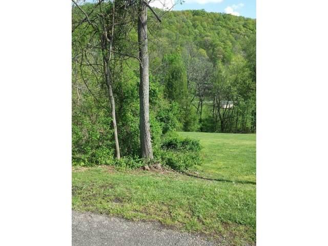 4416 Matilda Place, Kingsport, TN 37664 (MLS #9922288) :: Red Door Agency, LLC