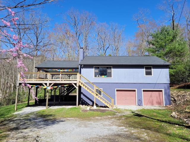 770 Copperhead Road, Elizabethton, TN 37643 (MLS #9922291) :: Bridge Pointe Real Estate