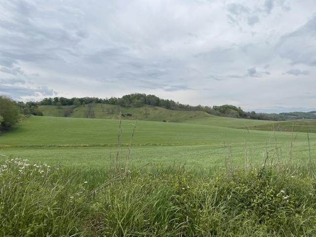 Tbd Reedy Creek Road, Abingdon, VA 24210 (MLS #9922298) :: Highlands Realty, Inc.