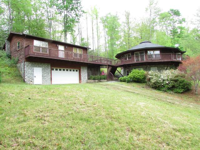 167 Violet Lane, Hampton, TN 37658 (MLS #9922312) :: Bridge Pointe Real Estate