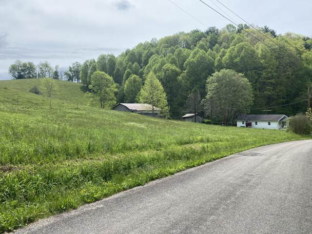 500 Clarence Stout Lane, Mountain City, TN 37683 (MLS #9922330) :: Tim Stout Group Tri-Cities