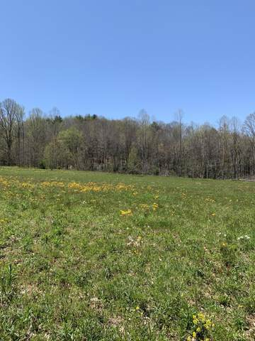 Tbd Highway 91, Shady Valley, TN 37688 (MLS #9922338) :: Tim Stout Group Tri-Cities