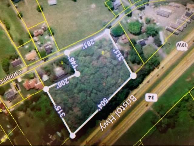 167 Carlton Lane, Piney Flats, TN 37686 (MLS #9922342) :: Conservus Real Estate Group