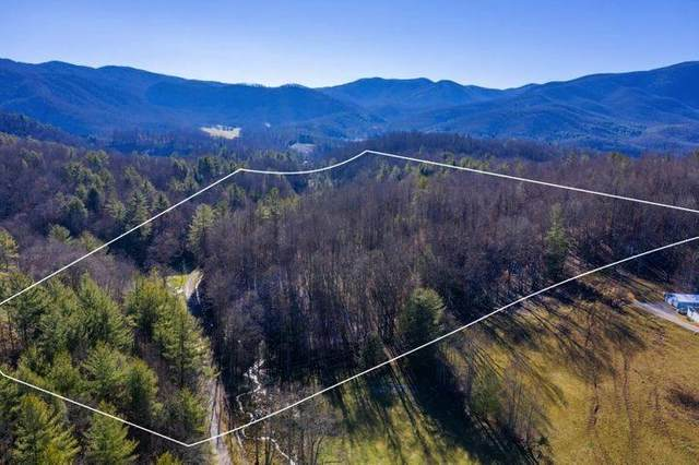 Tbd Young Road, Unicoi, TN 37692 (MLS #9922376) :: Tim Stout Group Tri-Cities