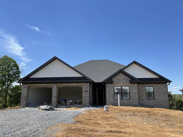 1172 Panoramic Vista, Gray, TN 37615 (MLS #9922387) :: Highlands Realty, Inc.