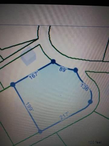 Tbd Pine Knot Road, Johnson City, TN 37601 (MLS #9922414) :: Red Door Agency, LLC