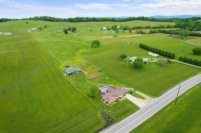 5925 Snapps Ferry Road, Afton, TN 37616 (MLS #9922438) :: Highlands Realty, Inc.