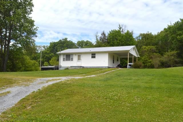 1230 Walkertown Road, Afton, TN 37616 (MLS #9922450) :: Highlands Realty, Inc.
