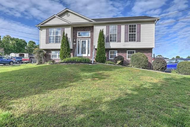 188 Collins Lane, Limestone, TN 37681 (MLS #9922456) :: Red Door Agency, LLC