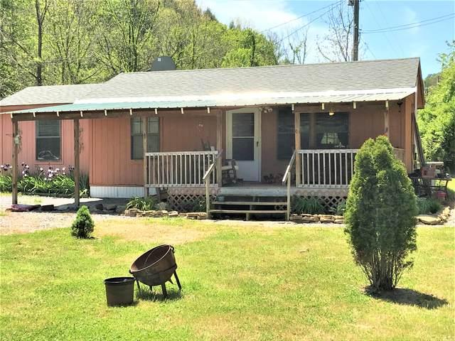 230 Adams Lane, Mooresburg, TN 37811 (MLS #9922475) :: Red Door Agency, LLC