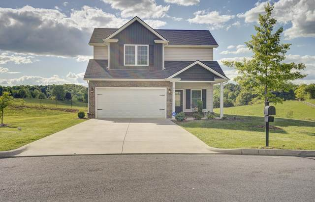 883 Ashley Meadows, Jonesborough, TN 37659 (MLS #9922507) :: Tim Stout Group Tri-Cities