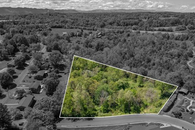 Tbd Estate Drive, Johnson City, TN 37604 (MLS #9922511) :: Tim Stout Group Tri-Cities