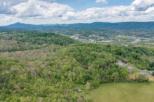 395 Ridgeway Road, Kingsport, TN 37664 (MLS #9922557) :: Conservus Real Estate Group