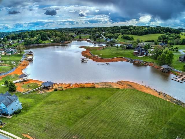 196 Forest Lane North, Blountville, TN 37617 (MLS #9922589) :: Conservus Real Estate Group