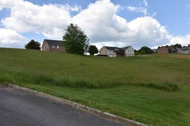 214 Roanoke Drive, Surgoinsville, TN 37873 (MLS #9922613) :: The Lusk Team