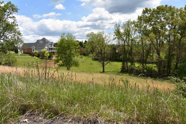 507 Conner Lyons Drive, Surgoinsville, TN 37873 (MLS #9922623) :: The Lusk Team