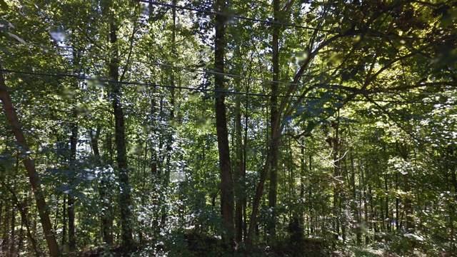 Tbd Thorngrove Drive, Bloomingdale, TN 37660 (MLS #9922663) :: Conservus Real Estate Group