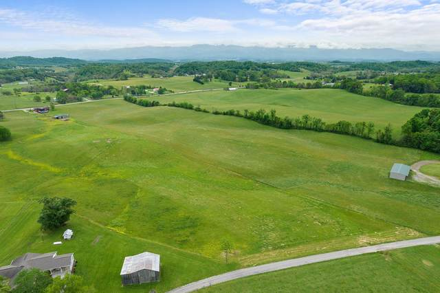 Tbd Mary Lamons Road, Afton, TN 37616 (MLS #9922680) :: Conservus Real Estate Group
