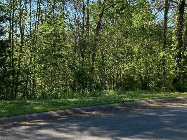 00 Links View Dr Lot 24, Greeneville, TN 37743 (MLS #9922698) :: The Lusk Team