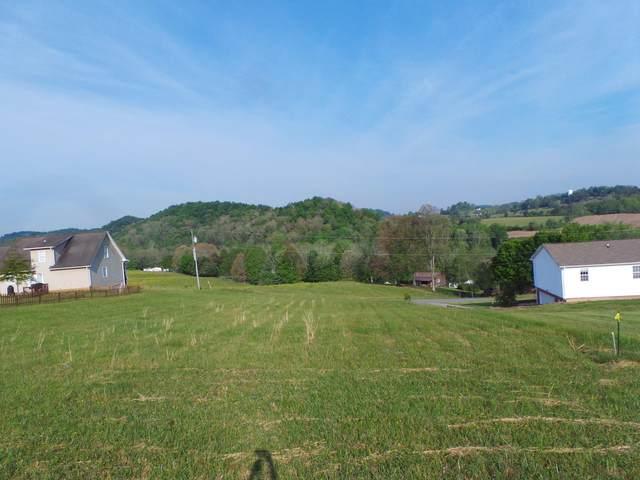 1344 Timber Ridge Road, Bluff City, TN 37618 (MLS #9922755) :: Conservus Real Estate Group