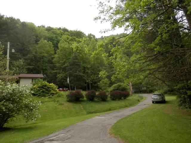 133 Donny Brook Drive, Pennington Gap, VA 24277 (MLS #9922763) :: Red Door Agency, LLC
