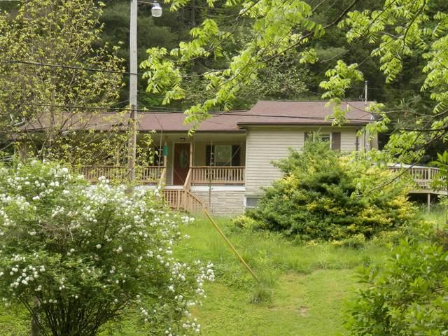 133 Donny Brook Drive, Pennington Gap, VA 24277 (MLS #9922784) :: Red Door Agency, LLC