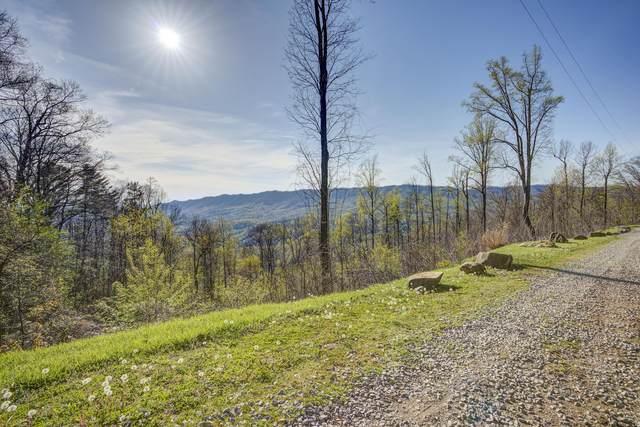 4 Ridgetop Lane, Unicoi, TN 37692 (MLS #9922795) :: Highlands Realty, Inc.