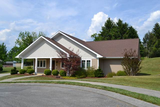 330 Princeton Gardens Drive, Johnson City, TN 37601 (MLS #9922962) :: Tim Stout Group Tri-Cities