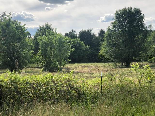 891 County Line Road, Mooresburg, TN 37811 (MLS #9923079) :: Conservus Real Estate Group