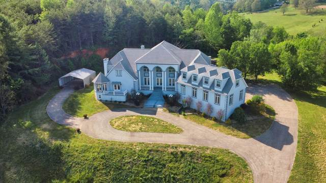 1393 Riverside Drive, Bluff City, TN 37618 (MLS #9923113) :: Conservus Real Estate Group