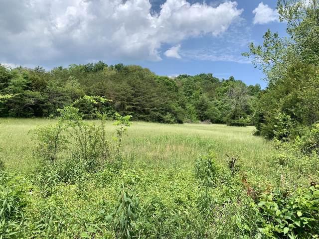 Tbd Gap Mtn Road, Greeneville, TN 37745 (MLS #9923171) :: Highlands Realty, Inc.