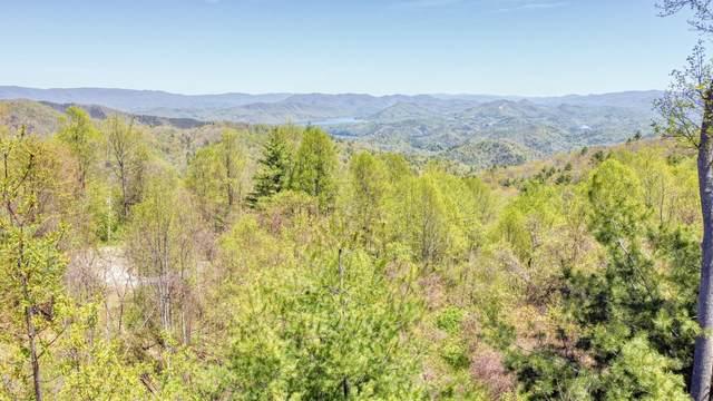 1209 Mays Ridge Road, Butler, TN 37640 (MLS #9923218) :: Conservus Real Estate Group