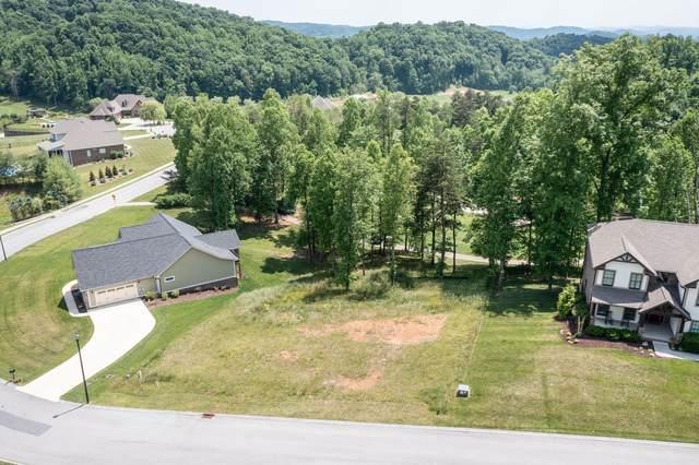 382 Golf Ridge Drive, Kingsport, TN 37664 (MLS #9923260) :: Conservus Real Estate Group