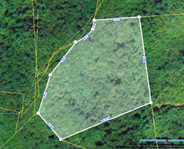 Tbd 0 Pinnacle Road, Unicoi, TN 37692 (MLS #9923279) :: Highlands Realty, Inc.