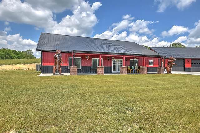 145 Spider Stines Road, Greeneville, TN 37745 (MLS #9923281) :: Highlands Realty, Inc.