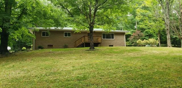 258 Sugar Hollow Road, LaFollette, TN 37766 (MLS #9923338) :: Red Door Agency, LLC