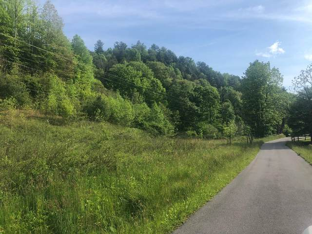 110 Gentry Mountain Road, Erwin, TN 37650 (MLS #9923349) :: Tim Stout Group Tri-Cities
