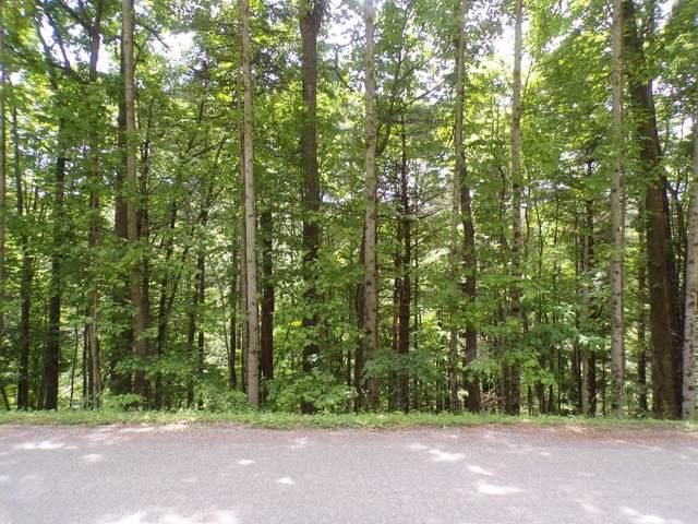 Tbd Laurelwood Lane, Mountain City, TN 37683 (MLS #9923451) :: Conservus Real Estate Group