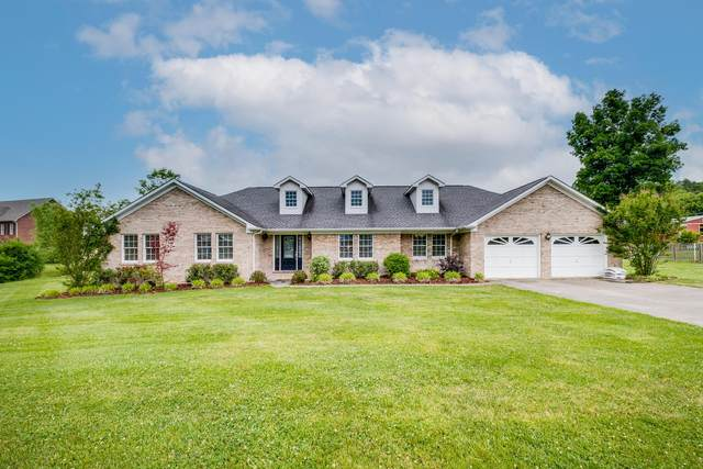 1008 Page Place, Kingsport, TN 37660 (MLS #9923482) :: Conservus Real Estate Group