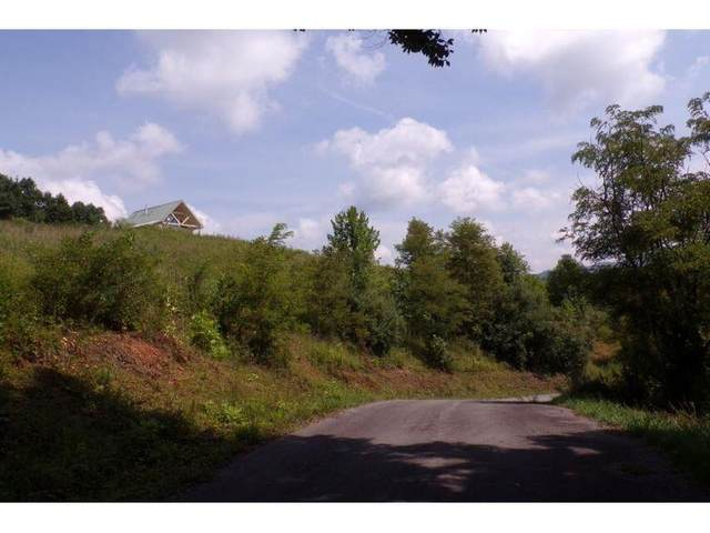 Tbd Arrowhead Trail, Mountain City, TN 37683 (MLS #9923499) :: The Lusk Team