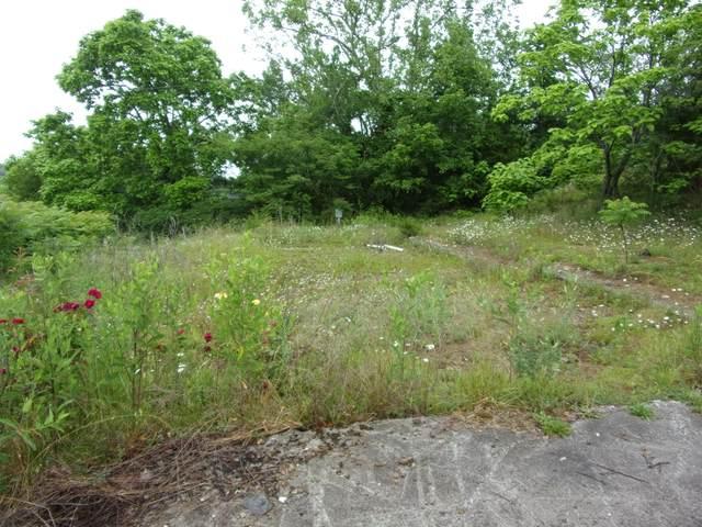 409 Sycamore, Bulls Gap, TN 37711 (MLS #9923517) :: Highlands Realty, Inc.