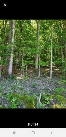 2248 Island Park Circle, Talbott, TN 37877 (MLS #9923519) :: Conservus Real Estate Group