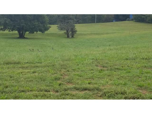 Tbd 1 Paydons Way, Unicoi, TN 37692 (MLS #9923531) :: Highlands Realty, Inc.