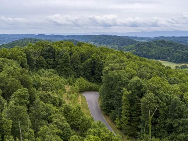 1045 Tree Top Pvt Drive, Kingsport, TN 37664 (MLS #9923568) :: Tim Stout Group Tri-Cities