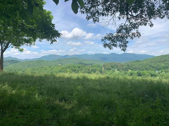 N/A Wolfe Creek Road, Del Rio, TN 37727 (MLS #9923680) :: Highlands Realty, Inc.
