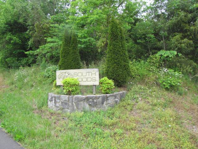 0 Southwood Drive, Kingsport, TN 37664 (MLS #9923681) :: Red Door Agency, LLC