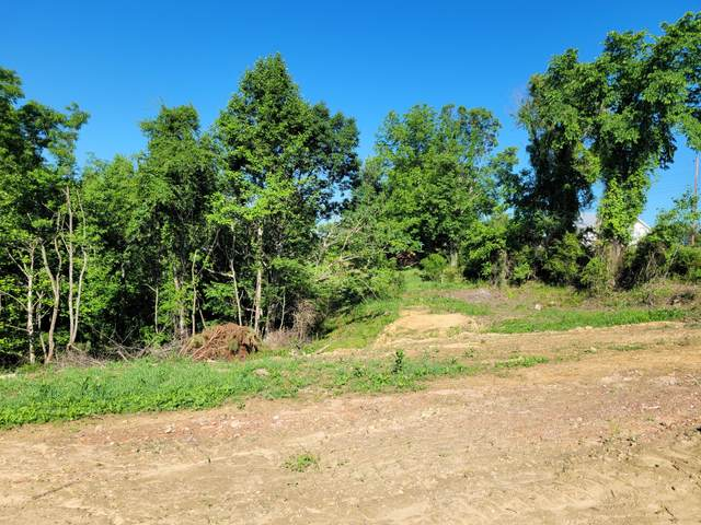 Tbd Newberry Ridge, Clinchco, VA 24226 (MLS #9923729) :: Highlands Realty, Inc.