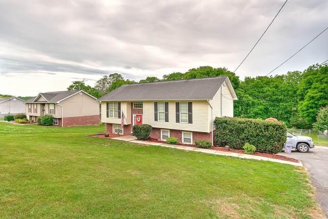 341 Mcinturff Road, Limestone, TN 37681 (MLS #9923775) :: Red Door Agency, LLC
