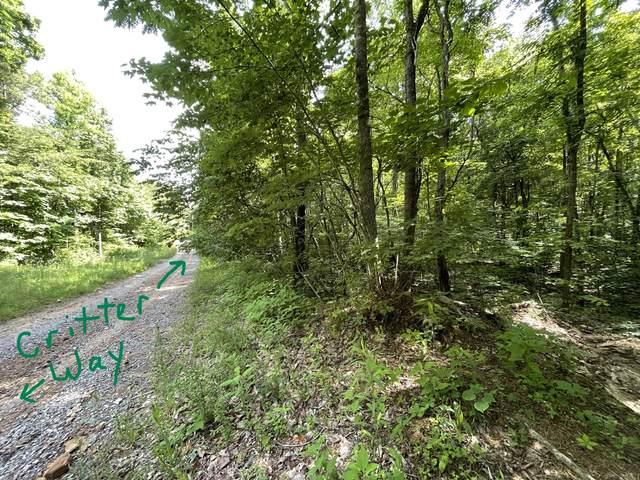 0 Lightnen Road, Parrotsville, TN 37843 (MLS #9923779) :: Highlands Realty, Inc.