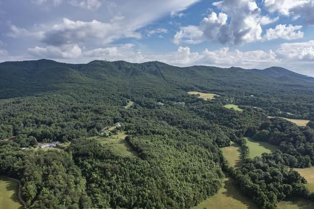4070 Sherman Hollow Road, Parrotsville, TN 37843 (MLS #9923794) :: Highlands Realty, Inc.